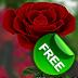 Живые обои «Роза 3D»